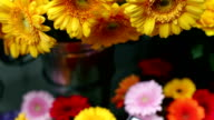 Colorful flowers video