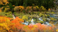 Colorful Lake, Waterfall, Forest, Mountains At Jiuzhaigou In China video