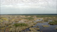 Colors In the Okefenokee Swamp  - Aerial View - Georgia,  Ware County,  United States video