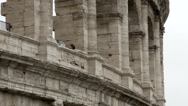 Colosseum, panorama of ancient building, Flavian amphitheater in Rome, Italy video