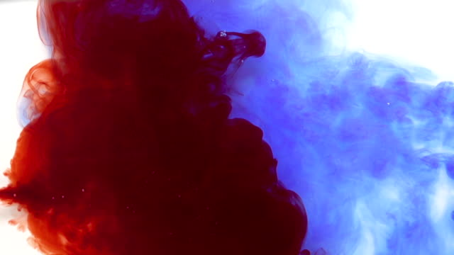 Colourful Blue and Red Ink Mixing On White Background video