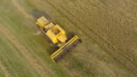 AERIAL: Combine harvester cutting wheat video