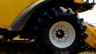 Combine harvester gathers wheat crop in a field video