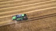 AERIAL: Combine Harvester in Barley Field video