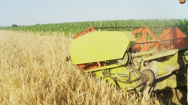 HD SLOW MOTION: Combine Harvester In The Wheat Field video