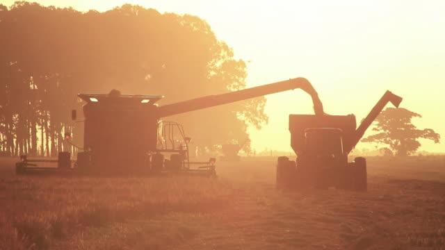 Combine Harvester sunset video