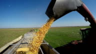Combine Harvester Unloading Corn Grain - Slow Motion video