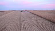 Combine Harvesting Fall Cornfield Aerial at Dusk video