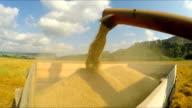 Combine Unloading Grains Into Trailer video