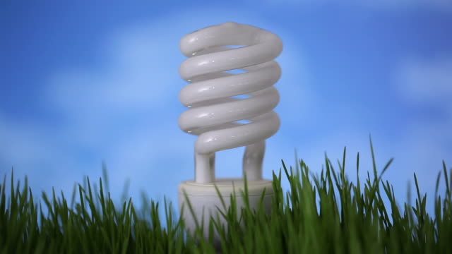 Compact fluorescent light bulb in grass video