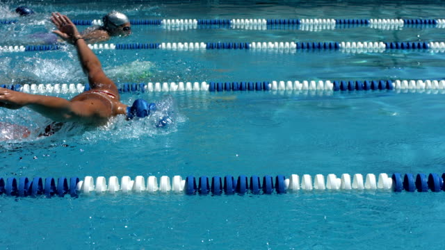 Competitive swimming race, slow motion video