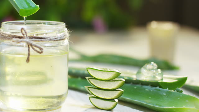 Composition of aloe vera. Concept of beauty cream derived from Aloe, natural medicine and care for the body due to its therapeutic properties, lifting, rejuvenation and Nature video