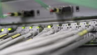 PAN Computer Network Switch With Blinking Lights (4K/UHD) video