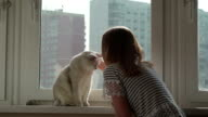 Concept of the relationship of man and his pet. Young blonde and white cat, Girl hugging a cat video