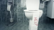 HD DOLLY: Conceptual Toilet Of Digestive Problems video