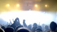 Concert crowd video