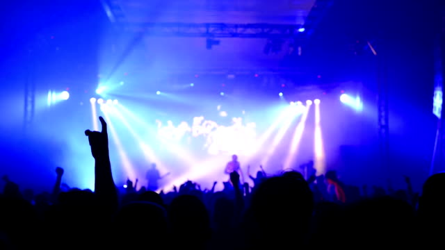 Concert crowd video