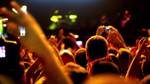 Concert crowd. video