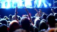 Concert crowd. video