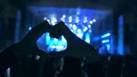 Concert fans. video