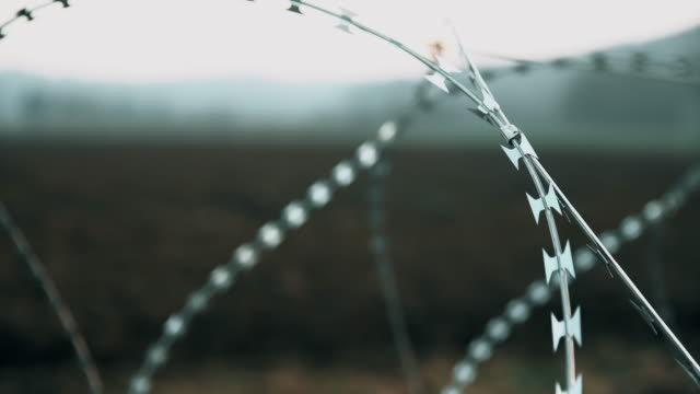 R/F Concertina wire placed on the field video