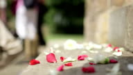 Confetti on the ground after a wedding ceremony. video