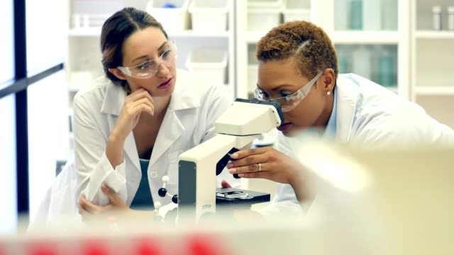 Confident African American female chemist discusses research findings with colleage video
