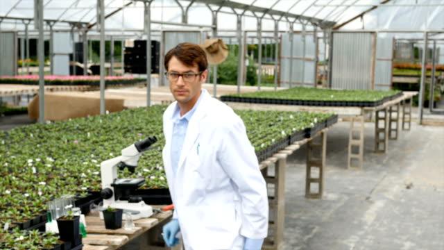 Confident botanist analyzes plants in greenhouse video