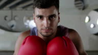 A confident boxer with drops of sweat on the face is standing in front of the camera. video