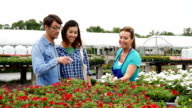 Confident senior garden center owner assists young couple with flower choice video