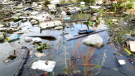 Consequences of urban water pollution video