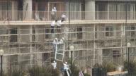 (HD1080i) Construction Site: Lifting New Windows video