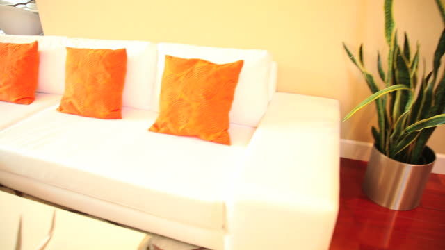 Contemporary living room video