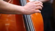 contrabass close up Full HD video video