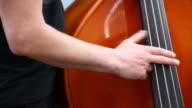 contrabass  player Full HD video video