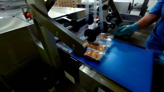 Conveyor belt with grilled meat video