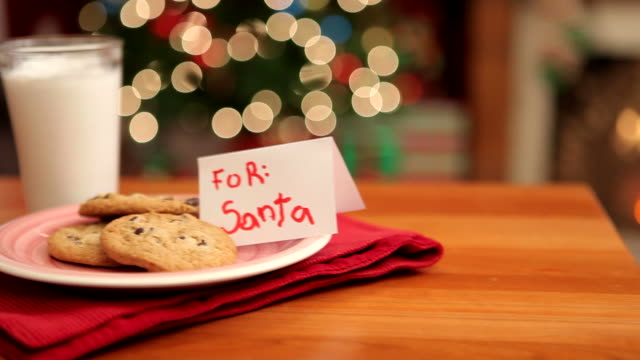 Cookies and milk for Santa video