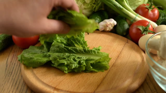 Cooking. Cutting fresh lettuce video