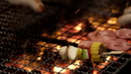 Cooking delicious Meat chicken and pork skewers on Barbecue Grill video