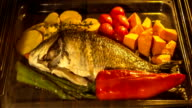 Cooking fish and vegetables in baking oven , time lapse video