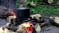 Cooking Food over a Campfire at the Tourist Pot video