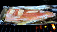 Cooking Fresh Salmon On Barbecue video