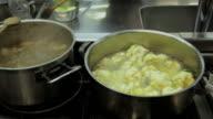 Cooking fresh vegetable video