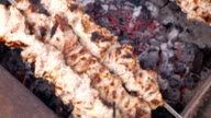 Cooking kebab on the coals. Grilled pork on skewers. Footage clip 4K, UHG, Ultra HD video