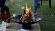 Cooking Marshmallows on the Fire video
