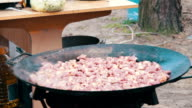 Cooking Meat in a Cauldron over an Open Fire Outdoors video