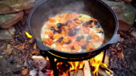 Cooking meat on a fire in cast-iron cauldron. video