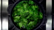 Cooking spinach video