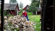cottager split hard log in country woodshed in summertime. FullHD video