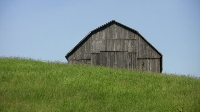 Country barn. video